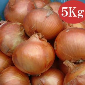 「岡野農園」兵庫県淡路島産たまねぎ(5kg)|hyogo-tokusanhin
