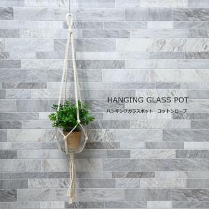 ハンギングプラント ハンギングプランター ガラスガーデンポット付き プランターカバー プランターポット 鉢カバー エクステリア ガーデン ガーデニング|hypnos