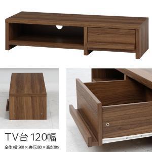 テレビ台 ローボード TV台 テレビボード 収納付きテレビ台 TV台 木製  TVボード ルーク 120幅|hypnos