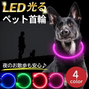 首輪 犬 猫 LEDライト USB充電式 ペット 50cm ペット用品 ドッググッズ 夜散歩|hysweb