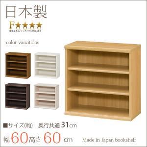 本棚 エースラック カラーラック おしゃれ 日本製 書棚 約幅60 奥行30 高さ60cm デスク下収納 小型 ミニ 子供 本箱 シェルフ 棚 ラック 本箱|i-11myroom