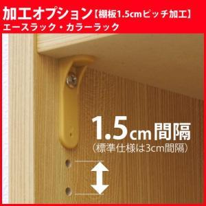 エースラック カラーラック 加工オプション 棚板1.5cmピッチ加工 1台分|i-11myroom
