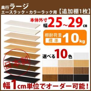 エースラック カラーラック 追加移動棚 1枚 【幅】25-29cm用 【奥行】46cm(ラージ)用 【棚厚】標準|i-11myroom