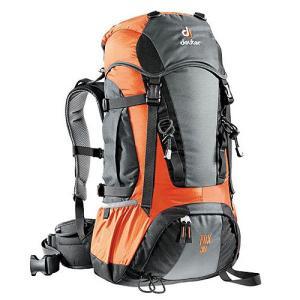 deuter/ドイター D36059-4900 フォックス 30 グレー×オレンジ i-collect