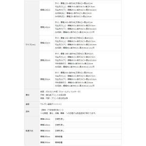 テレビ台 テレビボード ローボード 120 140 160 180 200 おしゃれ 北欧 日本製 収納 完成品 パス W NEW|i-company|18
