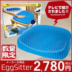 エッグシッター Egg Sitter  ジェルシート クッション 正規品 イッテQ! 卵を置いて座っても割れない 腰 負担軽減 マット カバー付き オフィス チェア 椅子 車