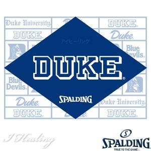 DUKE ケイジャー 壁画グラフィティ ブルー バスケットボール用バッグ デューク バックパック リュック スポルディング40-007DKG|i-healing|19