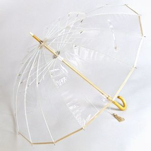 雨傘 十六夜 いざよい ビニール傘 ベージュ婦人傘 ホワイトローズ社 長傘16本骨傘 日本製|i-healing