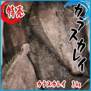 カラスカレイ 1kg|i-ichiba