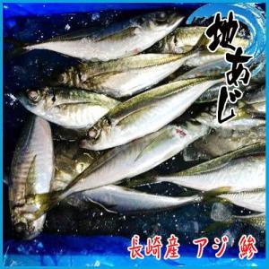 地あじ 1kg (1尾約110g以上) 約5-8尾入り 長崎産 アジ 鯵|i-ichiba