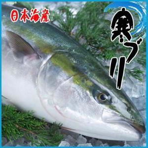 お歳暮)厳選仕入 活〆寒ブリ6-7kg 九州・日本海産 旬 ぶり 鰤|i-ichiba