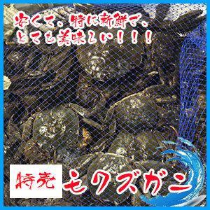 日本の川蟹 オス  モクズガニ 3kg   北海道産 ★予約必要 i-ichiba
