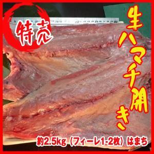 生ハマチ開き 約2.5kg(フィーレ1-2枚)はまち|i-ichiba