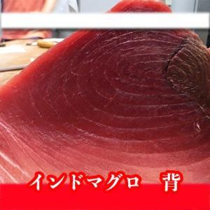 業務用 インド・太平洋沖 本マグロ(クロマグロ) 背ブロック 約2.5-3kg前後 まぐろ 鮪 本まぐろ|i-ichiba