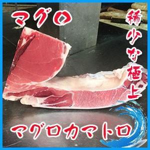 極上絶品 デカ カマトロ刺身 天然 本マグロ カマ 1個 約1〜2kg前後 稀少|i-ichiba