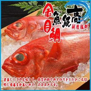 金目鯛 1尾(約1-1.2kg) キンメダイ きんめだい|i-ichiba