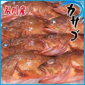 業務用 送料無料 カサゴ 石川 3kg約13尾前後|i-ichiba