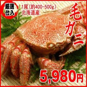【厳選仕入】活毛ガニ 1尾(約400-500g)蟹カニ 北海...