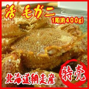 活毛ガニ 1尾(約400g)蟹 カニ 北海道網走産...