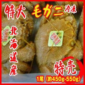 中サイズ 2-3人前 特大 毛ガニ 1尾(約450g-550g)北海道産 カニ 蟹 かに|i-ichiba