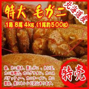 特大 毛ガニ 1箱 8尾 4kg(1尾約500g)北海道&産 カニ 蟹 かに|i-ichiba
