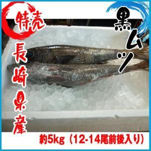 【業務用】長崎県産 黒ムツ 約5kg(12-14尾前後入り) クロムツ 黒むつ|i-ichiba