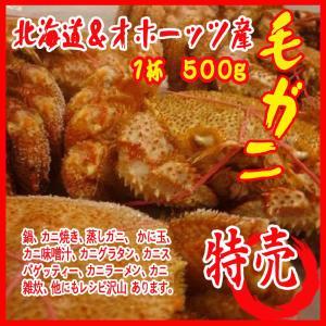 毛ガニ  1杯 500g 北海道&オホーッツ産 カニ 蟹 かに|i-ichiba