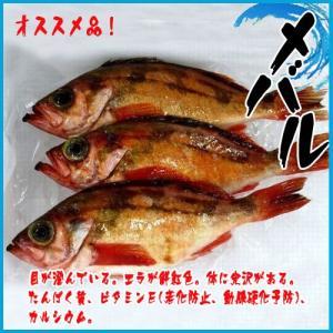 業務用 旬の魚 メバル  3kg  築地|i-ichiba