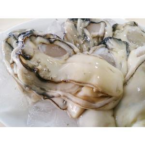 生むき 牡蠣   特大 1kg  三重産  牡蠣 かき カキ 牡蛎 加熱用★築地|i-ichiba