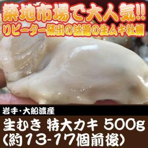 生むき 牡蠣 特大500g(約13-17個前後) 岩手・大船渡産 牡蠣 かき カキ 牡蛎 (約3-5人前) 加熱用★築地|i-ichiba