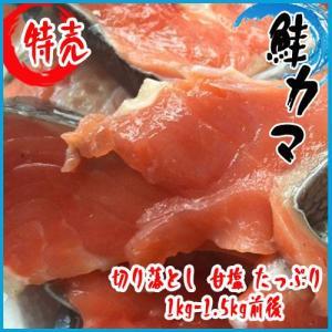 (訳あり) 鮭 カマ・切身 切り落とし 甘塩 たっぷり1kg-1.5kg前後 (紅鮭・銀鮭)★築地|i-ichiba