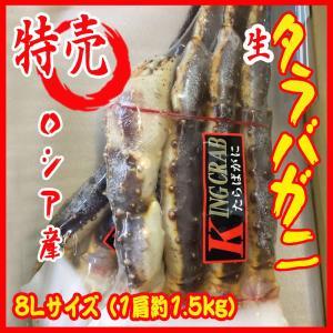 特特特大サイズ 生タラバガニ8L   1肩 約1.5kg  ロシア産 贈り物|i-ichiba