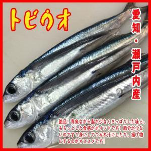 愛知・瀬戸内産 トビウオ 約1kg(2-4尾入り)|i-ichiba