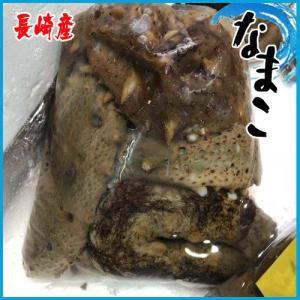 生 なまこ  1kg  長崎産  旬は初冬とされ、日本では酢の物として食べることが多く、味よりはコリ...