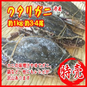 お歳暮) 冷凍ワタリガニ 約1kg 約3-4尾  渡り蟹 カ...