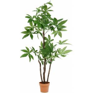 観葉植物 パキラ スタンダード 高さ172cm グリーン 52666 不二貿易