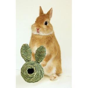 川井 うさぎボール 送料無料 うさぎ モルモット おもちゃ i-rabbit