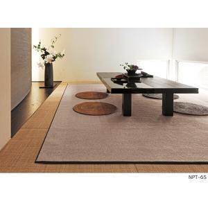 アスワン YES ウールカーペット ニューアスポーター 江戸間6畳 261×352cm i-read