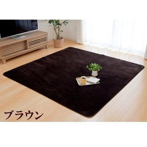 ラグカーペット「フラン」 (tm) 200×250cm 約3畳 ホットカーペットカバー 3畳 シンプル フランネル ラグ カーペット 長方形 床暖房 電気カーペット|i-s|05