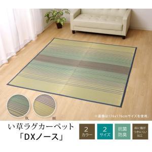 い草ラグ い草カーペット 約2畳 DXノース 約176×176cm (ib) イケヒコ おしゃれ カジュアル ブルー ベージュ ござ|i-s