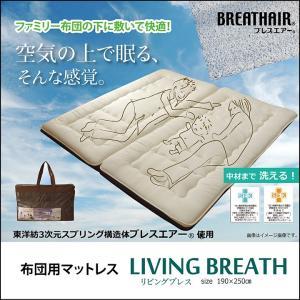 マットレス 「リビングブレス」 190×250 国産 通気性 耐久性 抗菌 耐圧分散 東洋紡 BREATHAIR ファミリー 布団|i-s