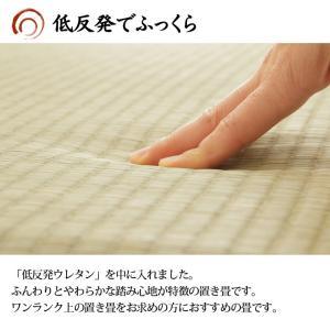 置き畳 日本製 ユニット畳 フローリング畳 「あぐら(低反発)」約82×82cm 9枚セット(約4.0畳) 置き畳 畳 軽量 正方形 い草|i-s|02