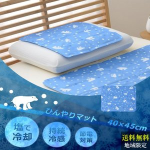 ●特徴 ・夏の夜の定番!蒸し暑い日本の夏にピッタリの快適冷感寝具 ・塩で冷やす特殊な冷却ジェルで夏の...