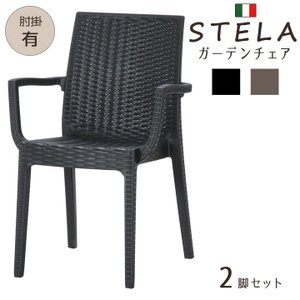 ガーデンチェア ラタン イタリア製 「ステラ(肘付き)」 2脚セット 屋外 アウトドア シンプル|i-s