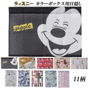 カラーボックス用目隠し シークレットクロス 選べる11柄 38×26cm 26×38cm ディズニー おしゃれ かわいい ミッキー ミニー ベル オーロラ|i-s