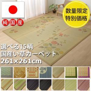 い草ラグ 国産 日本製 「選べるい草ラグ」 約261×261cm おしゃれ 4.5畳 畳カーペット い草 数量限定 正方形|i-s