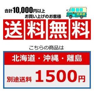 【国内正規品】KARCHER ケルヒャー 高圧洗浄機 K3 サイレント ベランダ 1.601-448.0 K3SLB/5 【50Hz東日本地区用】|i-selection|02