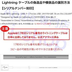 Apple 純正 iPhone iPad ライ...の詳細画像2