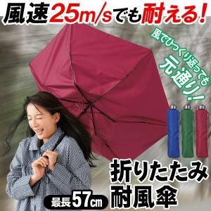 折りたたみ傘 100cm 強風・ゲリラ豪雨に負けない 裏返っても簡単に元通り メンズ レディース 風に強い傘 かさ 風速25m/に耐える検査クリア 軽い カサ ◇ 耐風傘