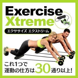 これ1つで運動の仕方は30通り以上!おうちで簡単&本格 全身...
